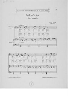 Vier Liebeslieder für eine mittlere Singstimme mit Klavierbegleitung: Nr.2 'Schlafe du' by Ernst Levy