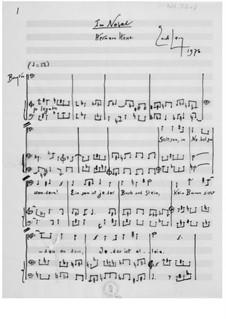 Im Nebel für Bariton und Klavier: Im Nebel für Bariton und Klavier by Ernst Levy