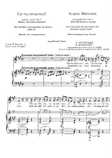 Sternlein, Sag' mir an: Zweite Fassung by Modest Mussorgski