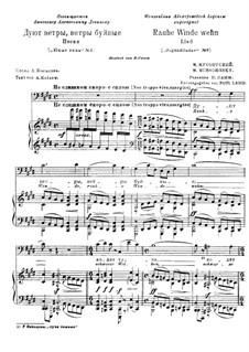 Es stürmen die Winde: Russische und deutsche Texte by Modest Mussorgski