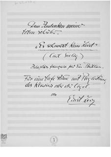 Es schmerzt kein Leid für eine tiefe Stimme mit Klavierbegleitung oder Orgel: Es schmerzt kein Leid für eine tiefe Stimme mit Klavierbegleitung oder Orgel by Ernst Levy