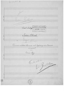Jeden Abend für eine mittlere Stimme mit Klavierbegleitung: Jeden Abend für eine mittlere Stimme mit Klavierbegleitung by Ernst Levy