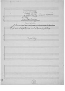 Winterahnung für eine Singstimme mit Klavierbegleitung: Winterahnung für eine Singstimme mit Klavierbegleitung by Ernst Levy