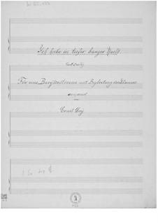 Ich habe in tiefer, banger Nacht für eine Baritonstimme mit Klavierbegleitung: Ich habe in tiefer, banger Nacht für eine Baritonstimme mit Klavierbegleitung by Ernst Levy