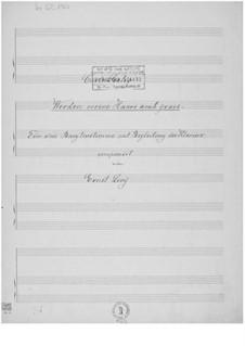 Werden meine Haare auch grau für eine Baritonstimme mit Klavierbegleitung: Werden meine Haare auch grau für eine Baritonstimme mit Klavierbegleitung by Ernst Levy