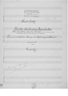Hinter blühenden Rosenhecken für eine mittelhohe Stimme mit Klavierbegleitung: Hinter blühenden Rosenhecken für eine mittelhohe Stimme mit Klavierbegleitung by Ernst Levy