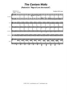 The Cantaro Waltz: The Cantaro Waltz by Stephen DeCesare