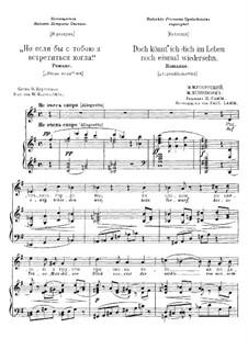 Ach, wenn ich dich doch wiedersehen könnte: Russische und deutsche Texte by Modest Mussorgski