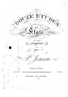 Zwölf Etüden für Flöte, Op.25: Zwölf Etüden für Flöte by Niels Peter Jensen