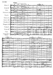 Sinfonie Nr.4 in c-Moll 'Tragische', D.417: Teil IV by Franz Schubert
