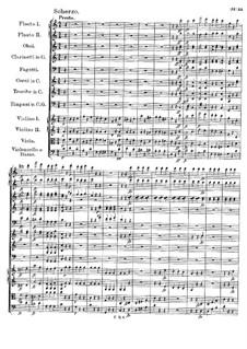 Sinfonie Nr.6 in C-Dur, D.589: Teil III by Franz Schubert