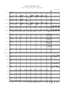 Adagio in g-Moll: For wind band by Tomaso Albinoni