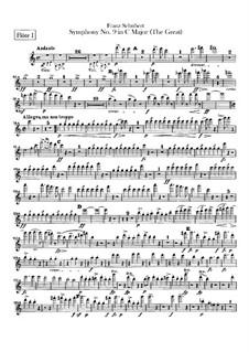 Sinfonie Nr.9 in C-Dur 'Die Grosse', D.944: Flötenstimme by Franz Schubert