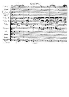 Messe Nr.3 in B-Dur, D.324 Op.141: Agnus Dei by Franz Schubert