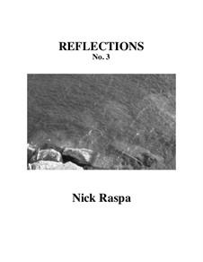 Reflections III: Reflections III by Nick Raspa