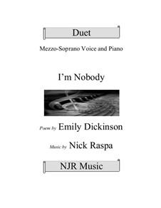 Ich bin Niemand: Ich bin Niemand by Nick Raspa