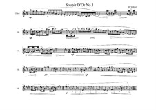 Piece for Oboe solo No.6, MVWV 872: Piece for Oboe solo No.6 by Maurice Verheul