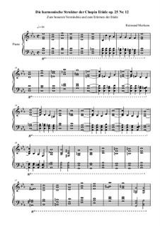Nr.12 in c-Moll: Harmonische Struktur by Frédéric Chopin