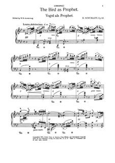 Waldscenen: Nr.7 Vogel als Prophet by Robert Schumann