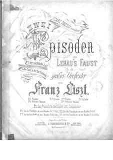 Zwei Episoden aus Lenaus Faust, für Klavier, vierhändig, S.599: Nr.1 Der nächtliche Zug by Franz Liszt
