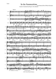 In the summertime: For flute, clarinet, cello and guitar by David W Solomons, Chris Benson