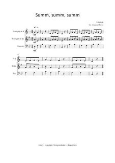 Summ, summ, summ: Für Trio Trompete, Trompete und Posaune, Op.03013 by folklore