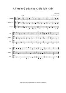 All mein Gedanken, die ich hab' - Trio für Violinen oder andere Melodieinstrumente: All mein Gedanken, die ich hab' - Trio für Violinen oder andere Melodieinstrumente, Op.01031 by folklore