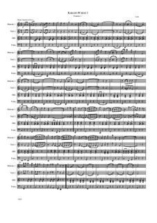 Konzert-Walzer 1 - 15: Konzert-Walzer 1 - 15 by Friedrich Gross