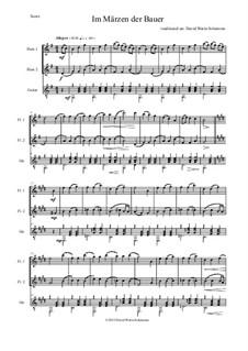 Fünf deutsche Volkslieder: Im Märzen der Bauer, für zwei Flöten und Gitarre by folklore