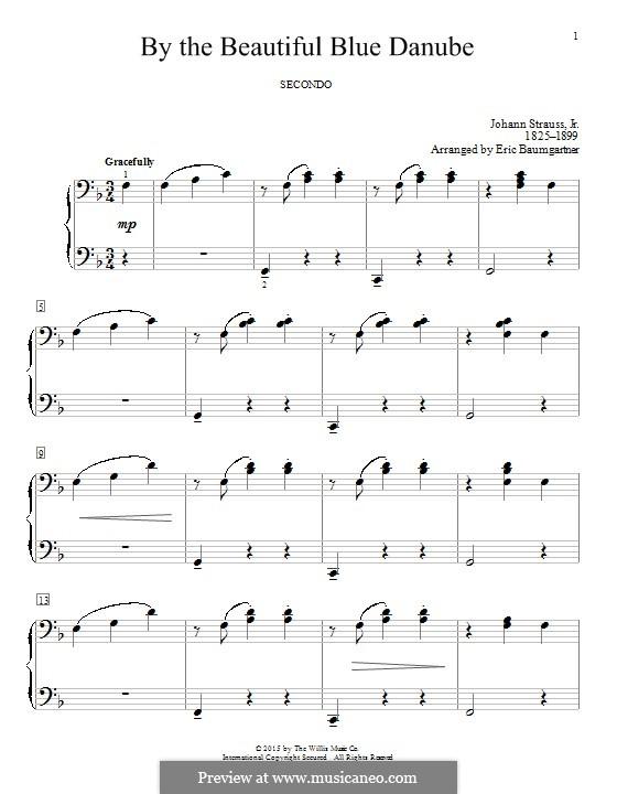 An der schönen blauen Donau, für Klavier, Op.314: Für einen Interpreten by Johann Strauss (Sohn)