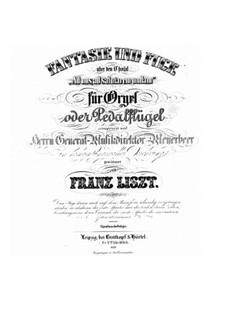 Fantasie und Fuge über Choral 'Ad nos, ad salutarem undam', S.259: Für Orgel, vierhändig by Franz Liszt