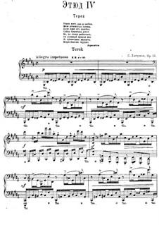 Zwölf transzendentale Etüden, Op.11: Nr.4 Térek by Sergei Lyapunov