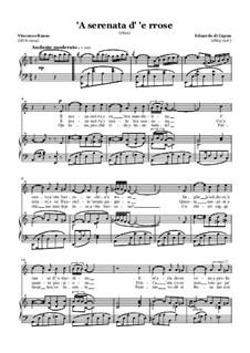 A serenata d'e rose: Für Stimme und Klavier (A minor) by Eduardo di Capua
