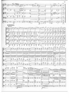 Streichquintett in C-Dur, D.956 Op.163: Teil III by Franz Schubert