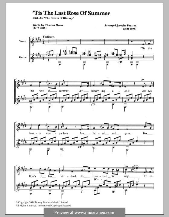 The Last Rose of Summer: Für Stimme und Gitarre by folklore