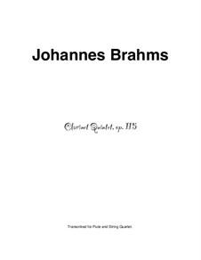Quintett für Klarinette und Streicher in h-moll, Op.115: Solostimme by Johannes Brahms