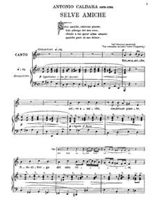 Selve amiche, ombrose piante: Für Stimme und Klavier (A minor) by Antonio Caldara