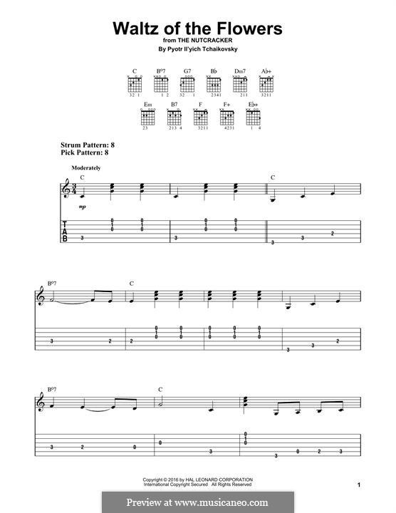Nr.8 Blumenwalzer: Für Gitarre by Pjotr Tschaikowski