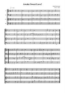 Awake Sweet Love Thou Art Returnd: For quartet recorder by John Dowland
