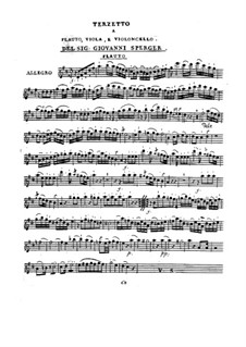 Terzett für Flöte, Bratsche und Cello in D-Dur: Terzett für Flöte, Bratsche und Cello in D-Dur by Johannes Matthias Sperger