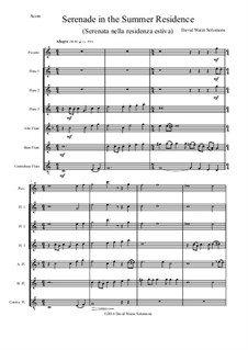 Serenade in the summer residence (Serenata nella residenza estiva): For flute choir by David W Solomons