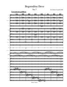 Bogoroditse Devo: Nr.7 by Christo Tsanoff