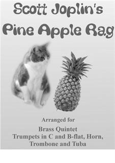 Pineapple Rag: Für Blechblasquintett by Scott Joplin