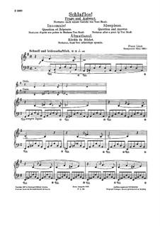 Schlaflos! Frage und Antwort, S.203: Für Klavier by Franz Liszt