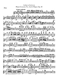 Vollständiger Konzert: Flötestimme by Ludwig van Beethoven