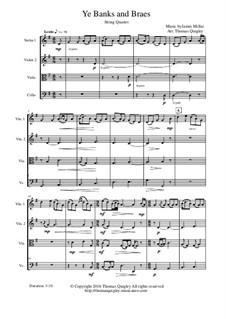 Ye Banks and Braes: Für Streichquartett by folklore