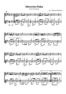 Sliwowitz-Polka: Für Klarinette und Gitarre by folklore
