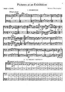Vollständiger Zyklus: Für Orchester – Cello- und Kontrabassstimmen by Modest Mussorgski