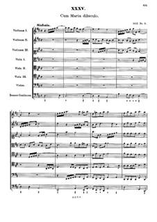Cum maria diluculo: Cum maria diluculo by Johann Rudolf Ahle