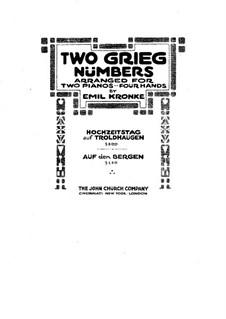 Aus dem Volksleben, Op.19: Nr.1 Auf den Bergen, für zwei Klaviere, vierhändig by Edvard Grieg